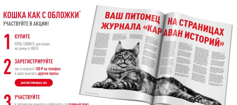 Royal Canin: «Кошка как с обложки»!