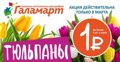 """Акция Галамарт """"Тюльпаны по 1 рублю"""""""