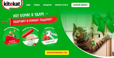 Промо акция KiteKat «Квартира и ремонт от кота Бориса»!